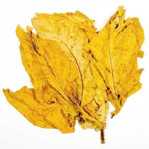 Virginia tobak
