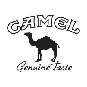 Camel - Men det är en dromedar på loggan